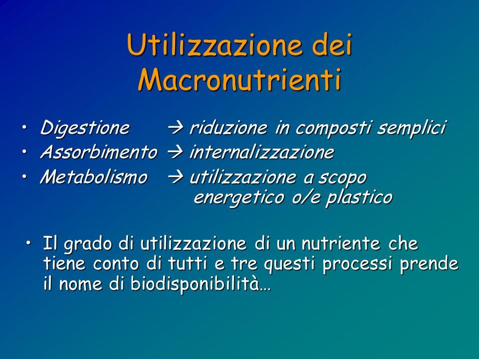 Utilizzazione dei Macronutrienti Digestione, assorbimento e metabolismo si sono evoluti nellarco di centinaia di migliaia di anni per utilizzare al meglio le fonti alimentari a disposizione.