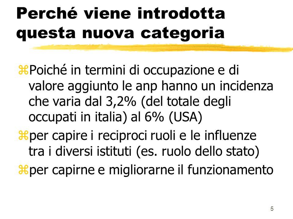 5 Perché viene introdotta questa nuova categoria zPoiché in termini di occupazione e di valore aggiunto le anp hanno un incidenza che varia dal 3,2% (del totale degli occupati in italia) al 6% (USA) zper capire i reciproci ruoli e le influenze tra i diversi istituti (es.