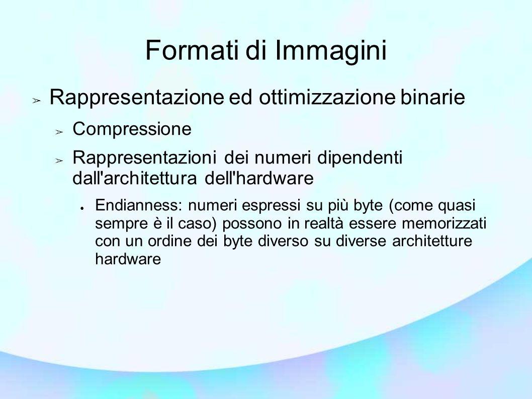 Formati di Immagini Rappresentazione ed ottimizzazione binarie Compressione Rappresentazioni dei numeri dipendenti dall'architettura dell'hardware End