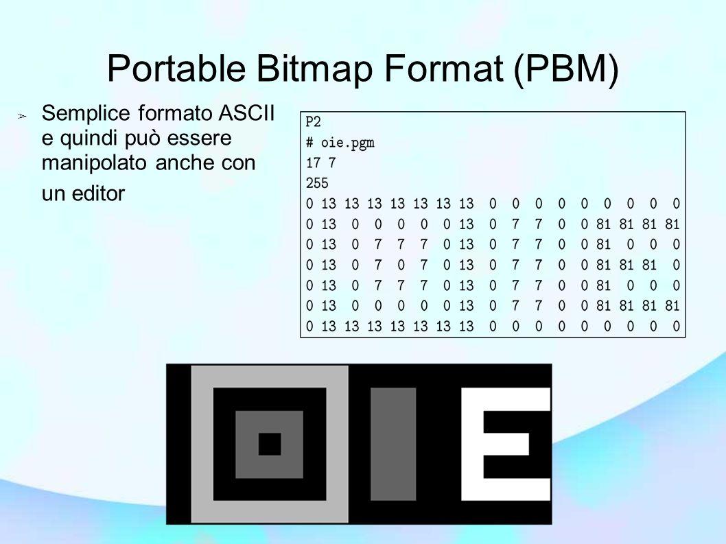 Semplice formato ASCII e quindi può essere manipolato anche con un editor Portable Bitmap Format (PBM)