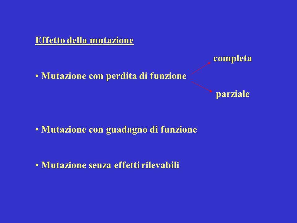 Effetto della mutazione completa Mutazione con perdita di funzione parziale Mutazione con guadagno di funzione Mutazione senza effetti rilevabili