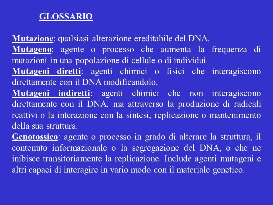 GLOSSARIO Mutazione: qualsiasi alterazione ereditabile del DNA. Mutageno: agente o processo che aumenta la frequenza di mutazioni in una popolazione d