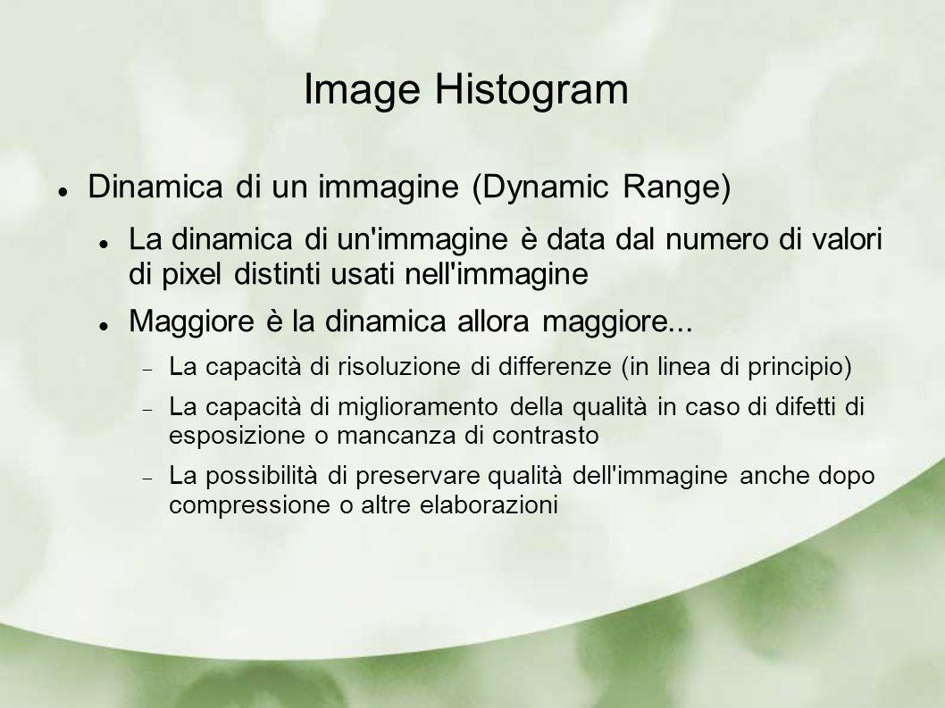 Dinamica di un immagine (Dynamic Range) La dinamica di un'immagine è data dal numero di valori di pixel distinti usati nell'immagine Maggiore è la din
