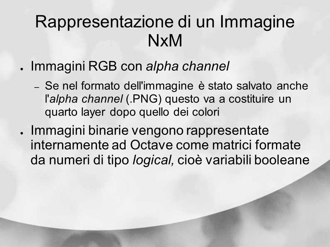 Rappresentazione di un Immagine NxM Immagini RGB con alpha channel – Se nel formato dell'immagine è stato salvato anche l'alpha channel (.PNG) questo