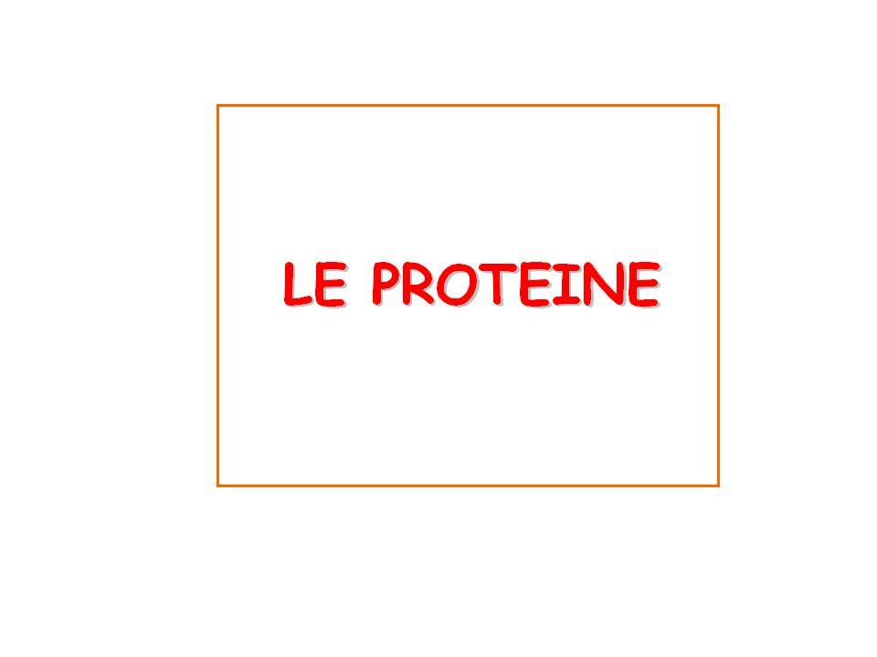 PROTEINE DEFINIZIONE: Macromolecole formate di AA della serie L uniti tra loro da un legame peptidico.