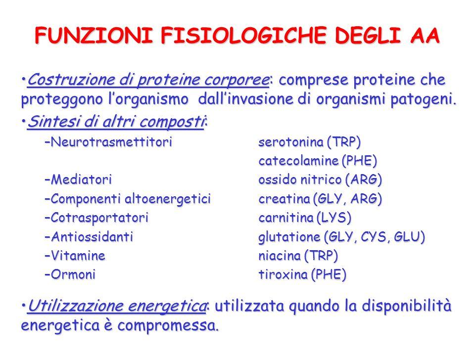 FUNZIONI FISIOLOGICHE DEGLI AA Costruzione di proteine corporee: comprese proteine che proteggono lorganismo dallinvasione di organismi patogeni.Costr