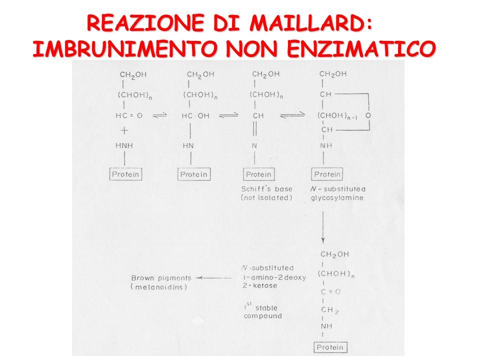 REAZIONE DI MAILLARD: IMBRUNIMENTO NON ENZIMATICO