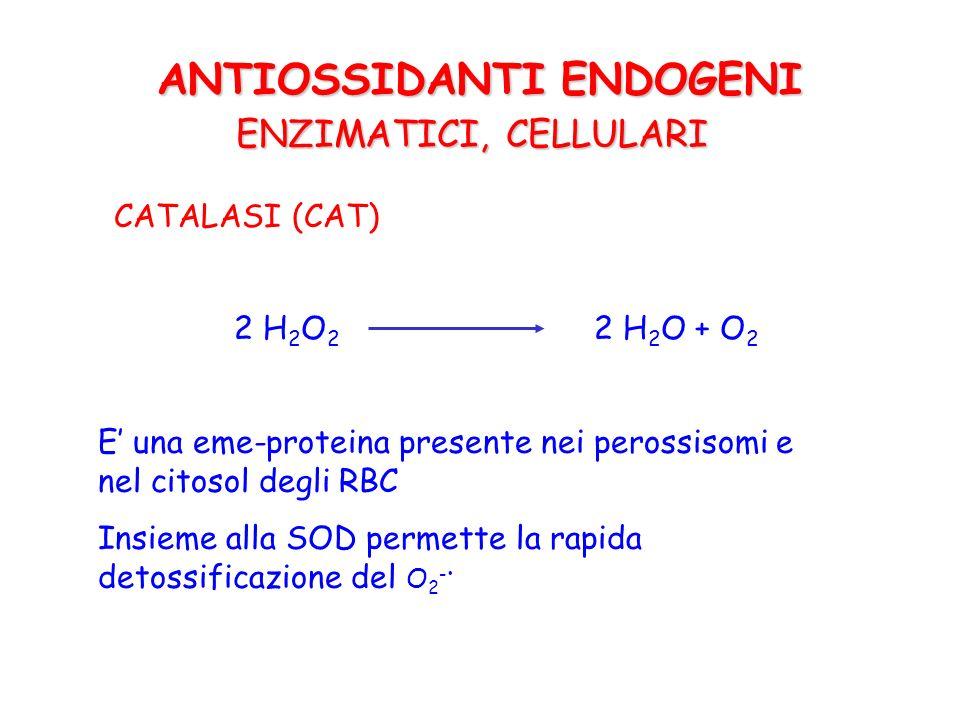 GLUTATIONE PEROSSIDASI (GSH-Px) 2 H 2 O 2 2 H 2 O + O 2 2 GSH GSSG ROOHROH + H 2 O GLUTATIONE REDUTTASI NADPH 2 NADP + ANTIOSSIDANTI ENDOGENI ENZIMATICI, CELLULARI E una Se-proteina presente nel citosol.
