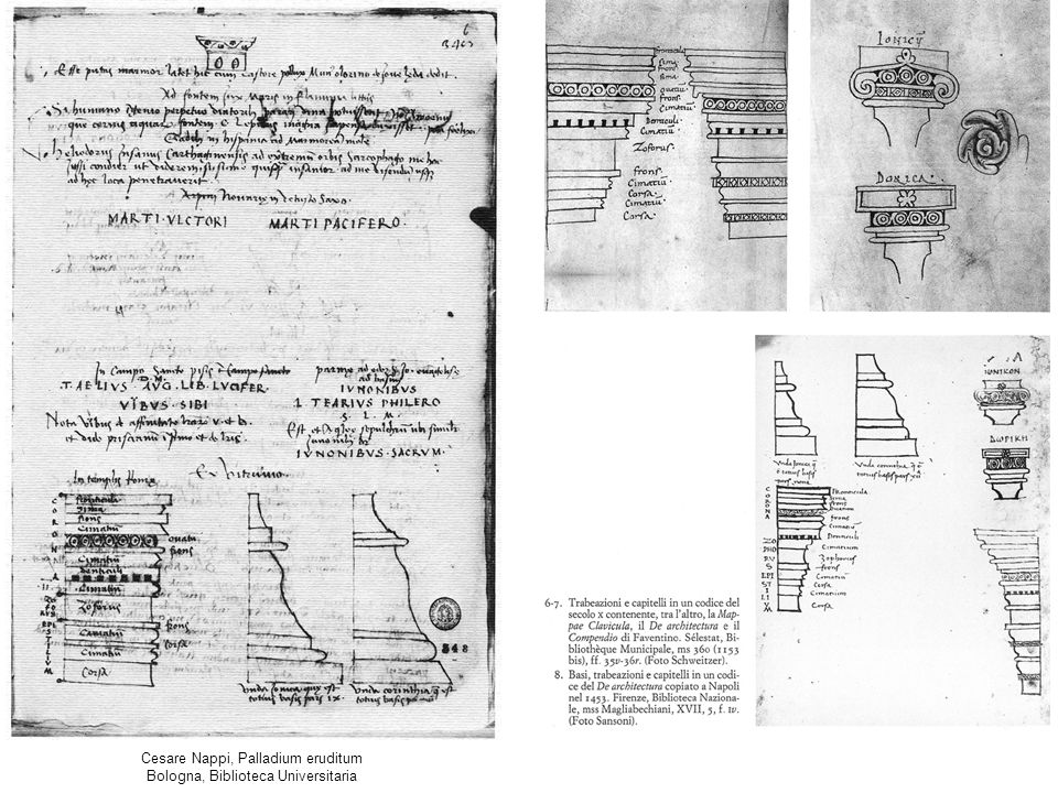 Cesare Nappi, Palladium eruditum Bologna, Biblioteca Universitaria