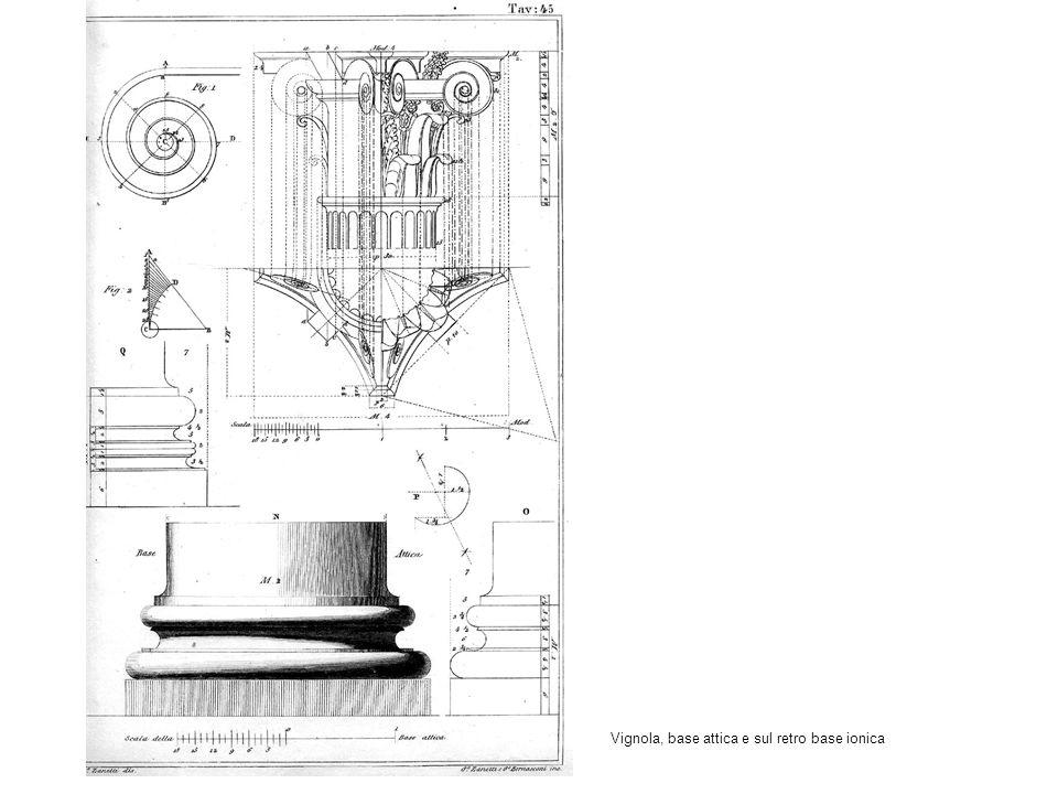 Vignola, base attica e sul retro base ionica
