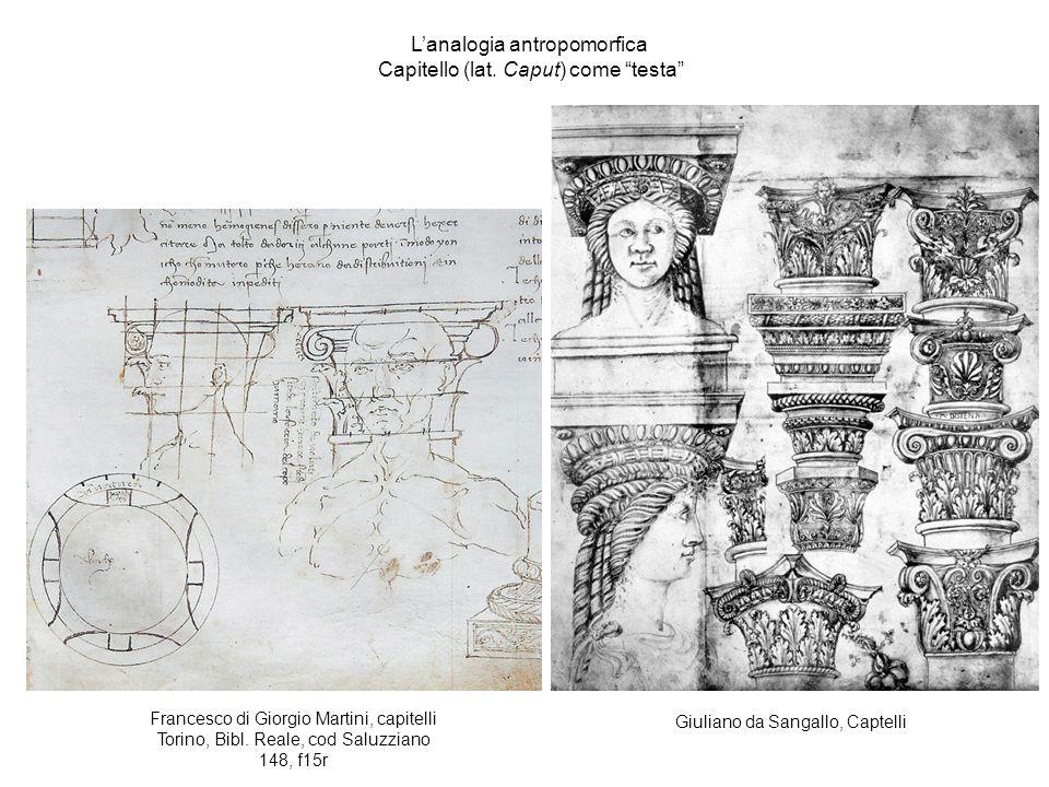 Giuliano da Sangallo, Captelli Lanalogia antropomorfica Capitello (lat.