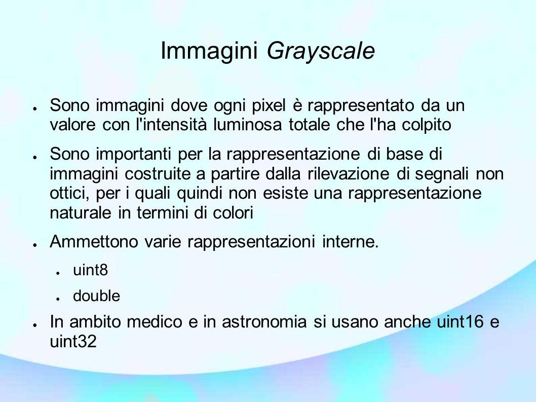Immagini Grayscale Sono immagini dove ogni pixel è rappresentato da un valore con l'intensità luminosa totale che l'ha colpito Sono importanti per la