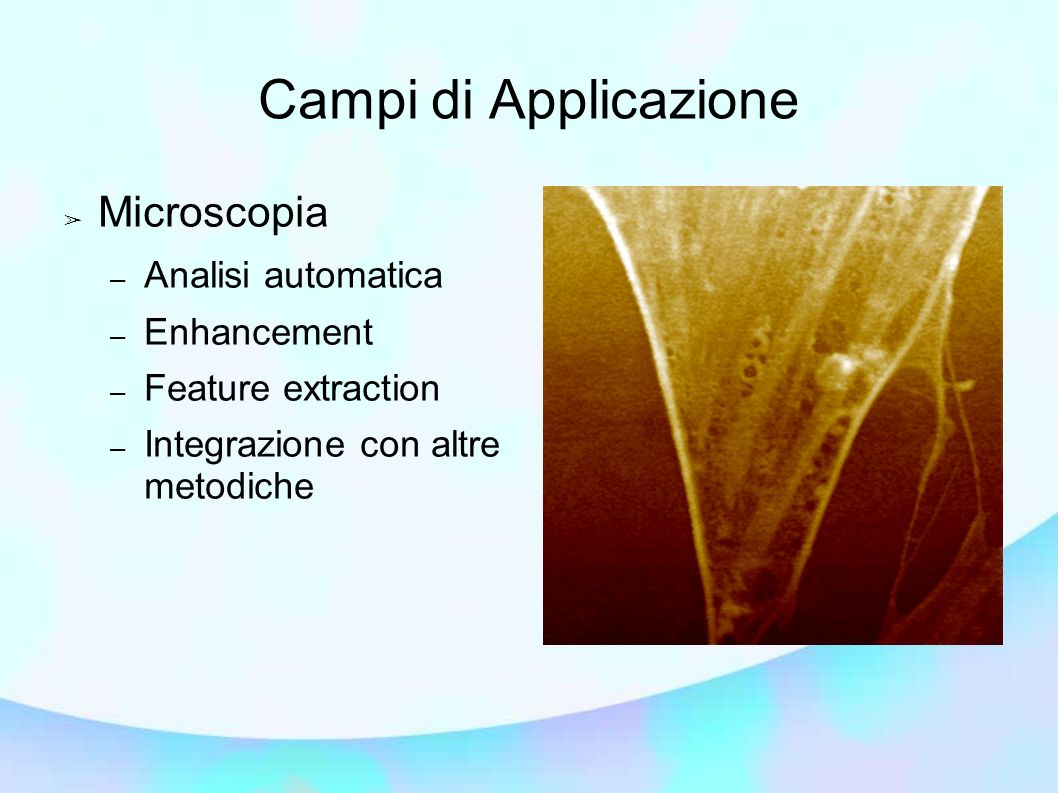 Campi di Applicazione Microscopia – Analisi automatica – Enhancement – Feature extraction – Integrazione con altre metodiche