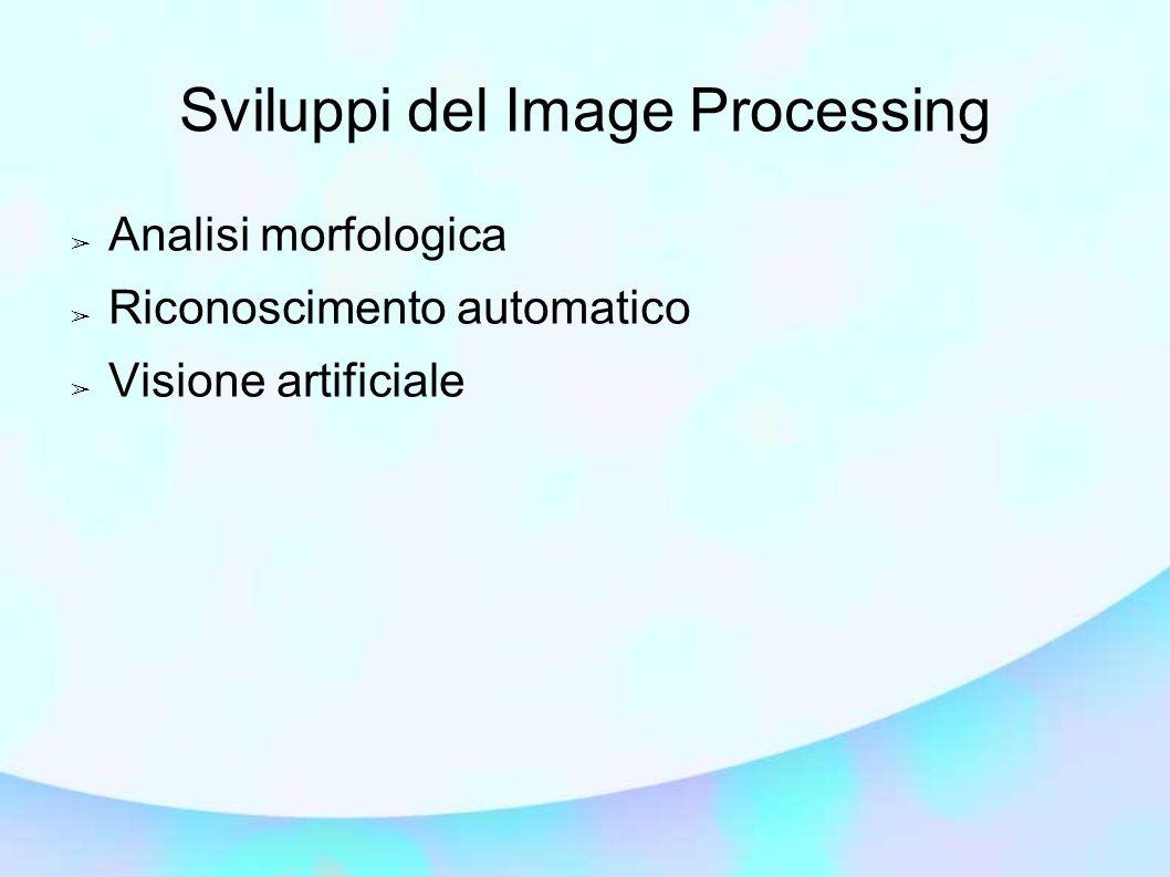 Sviluppi del Image Processing Analisi morfologica Riconoscimento automatico Visione artificiale