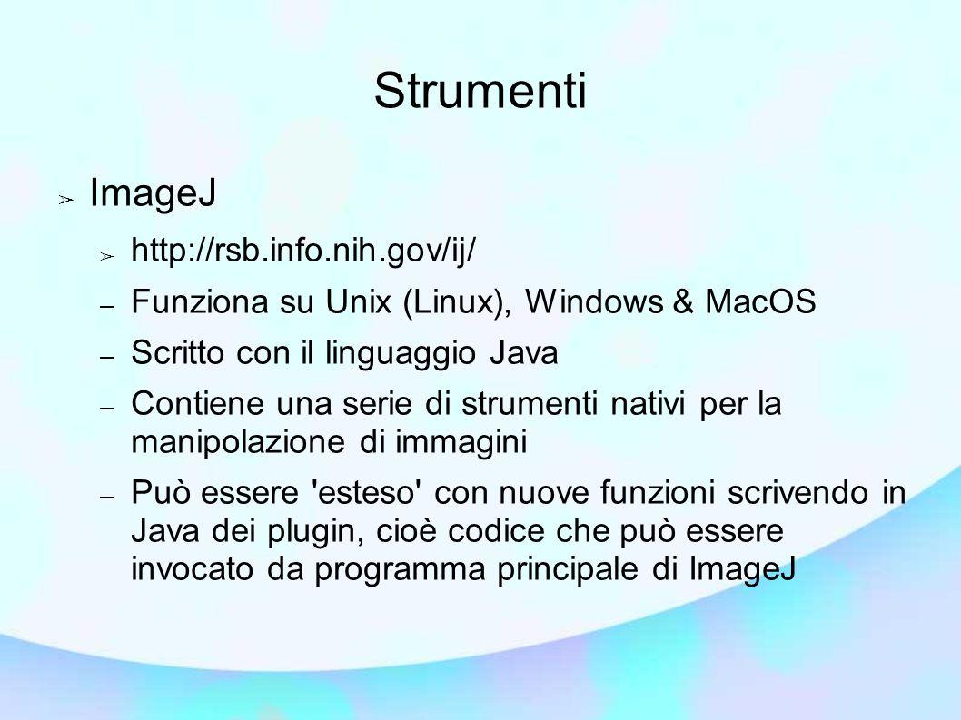 Strumenti ImageJ http://rsb.info.nih.gov/ij/ – Funziona su Unix (Linux), Windows & MacOS – Scritto con il linguaggio Java – Contiene una serie di strumenti nativi per la manipolazione di immagini – Può essere esteso con nuove funzioni scrivendo in Java dei plugin, cioè codice che può essere invocato da programma principale di ImageJ