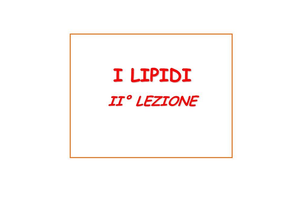 I LIPIDI II° LEZIONE