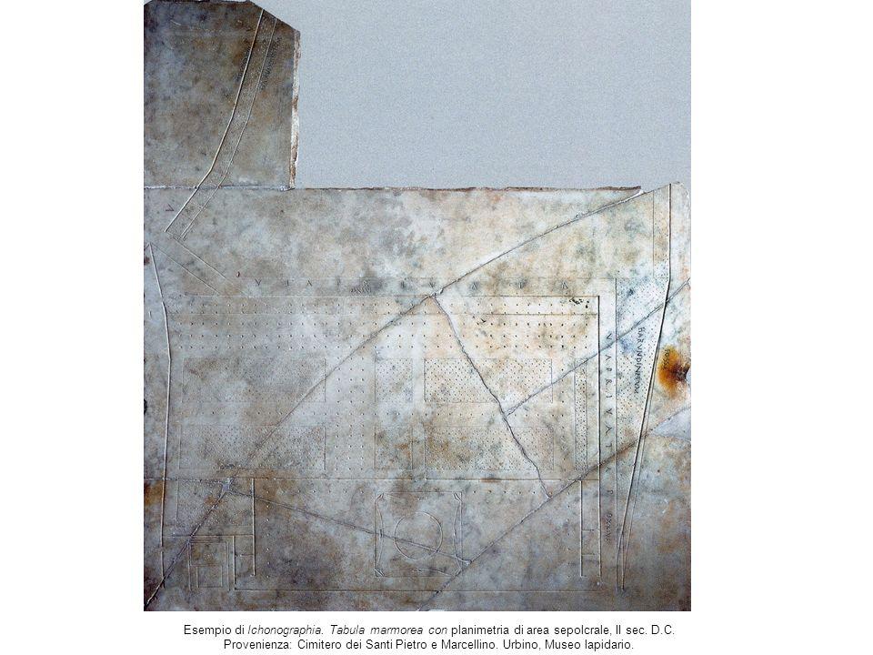 Modelli per S.Pietro a sinistra: A. da Sangallo il Giovane,.