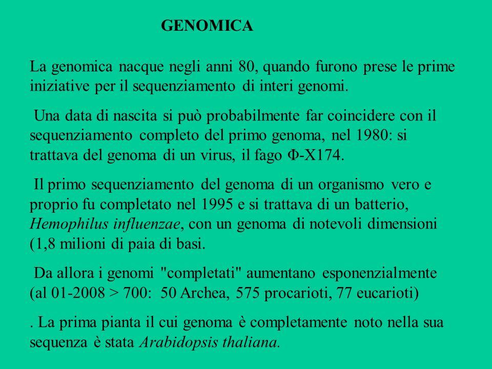 obiettivi della genomica mappe genetiche e fisiche del DNA degli organismi viventi, mediante il suo completo sequenziamento.