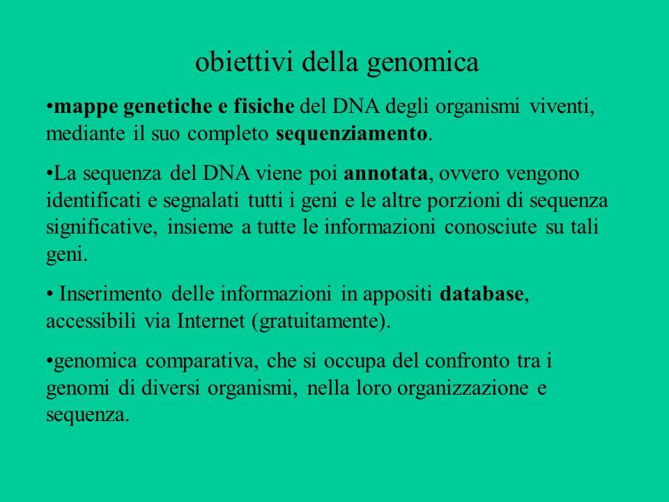 obiettivi della genomica mappe genetiche e fisiche del DNA degli organismi viventi, mediante il suo completo sequenziamento. La sequenza del DNA viene
