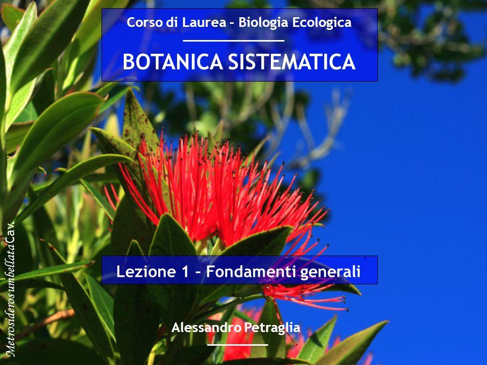 BOTANICA SISTEMATICA Alessandro Petraglia Corso di Laurea - Biologia Ecologica Lezione 1 – Fondamenti generali Metrosideros umbellata Cav.