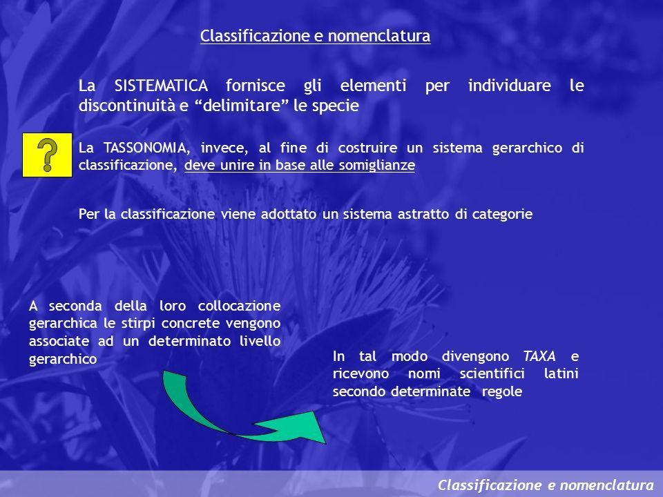 Classificazione e nomenclatura La SISTEMATICA fornisce gli elementi per individuare le discontinuità e delimitare le specie La TASSONOMIA, invece, al