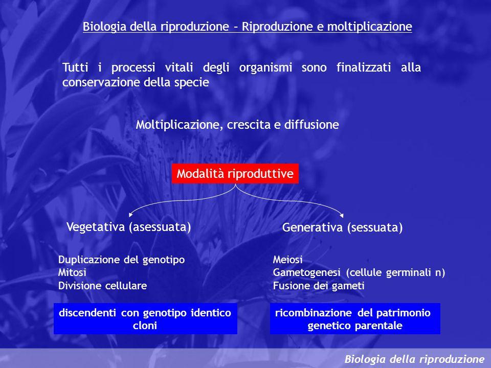 Biologia della riproduzione – Riproduzione e moltiplicazione Tutti i processi vitali degli organismi sono finalizzati alla conservazione della specie