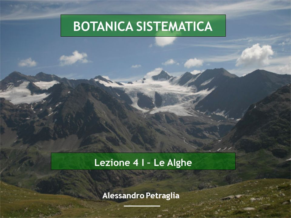 Lezione 4 I – Le Alghe BOTANICA SISTEMATICA Alessandro Petraglia