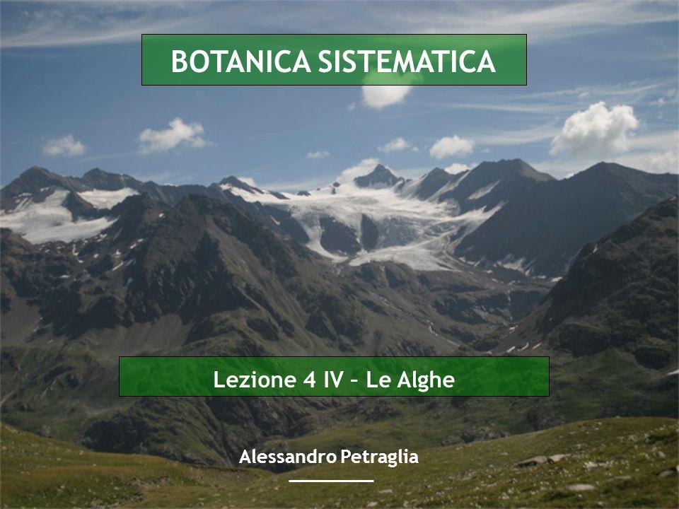 Lezione 4 IV – Le Alghe BOTANICA SISTEMATICA Alessandro Petraglia