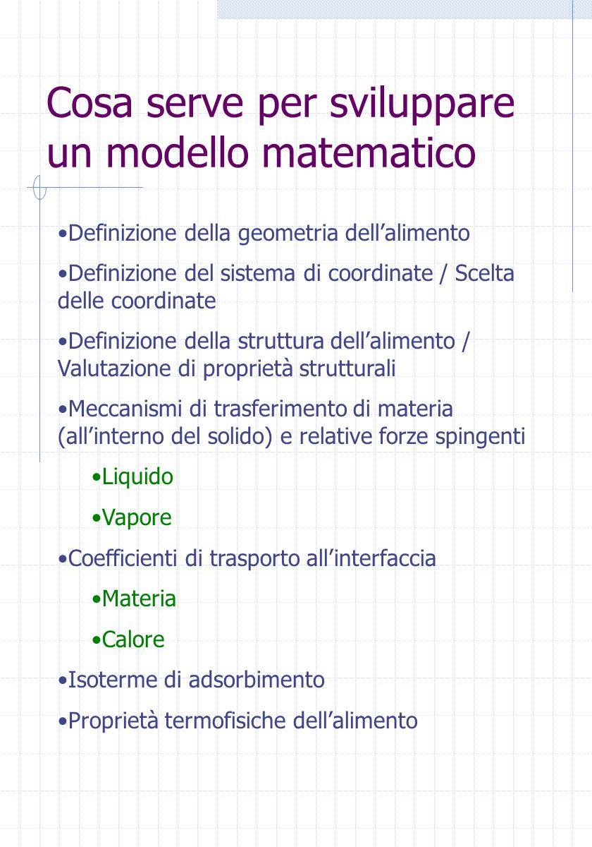 Cosa serve per sviluppare un modello matematico Definizione della geometria dellalimento Definizione del sistema di coordinate / Scelta delle coordina