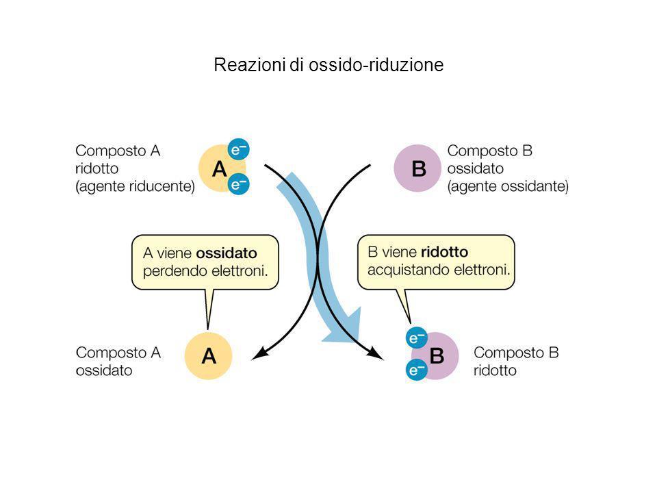 Reazioni di ossido-riduzione