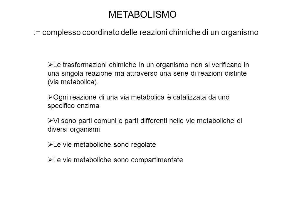 METABOLISMO := complesso coordinato delle reazioni chimiche di un organismo Le trasformazioni chimiche in un organismo non si verificano in una singol