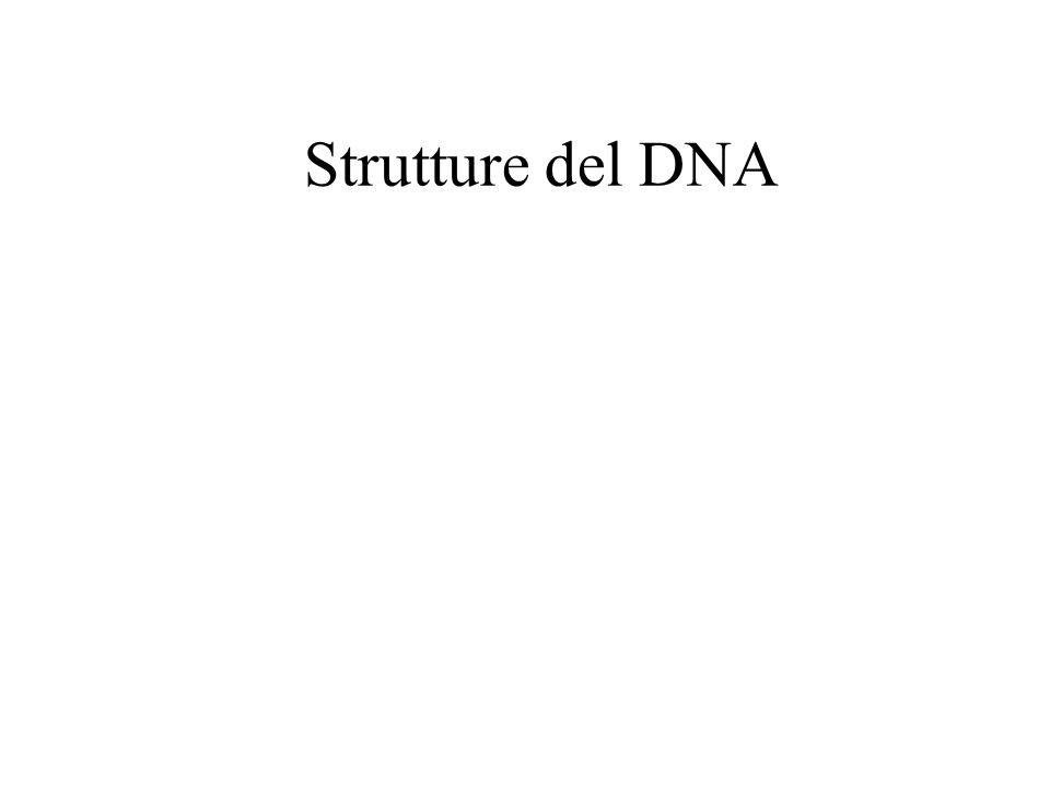 Strutture del DNA