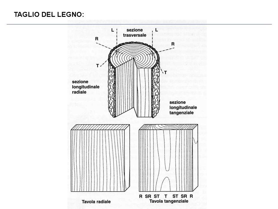 TAGLIO DEL LEGNO: