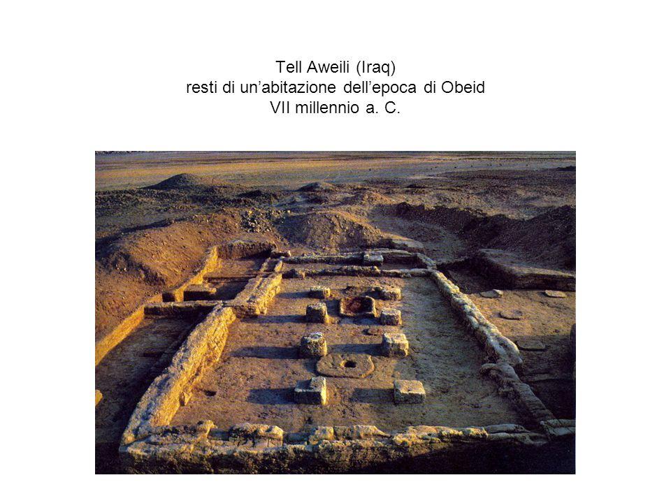 Tell Aweili (Iraq) resti di unabitazione dellepoca di Obeid VII millennio a. C.