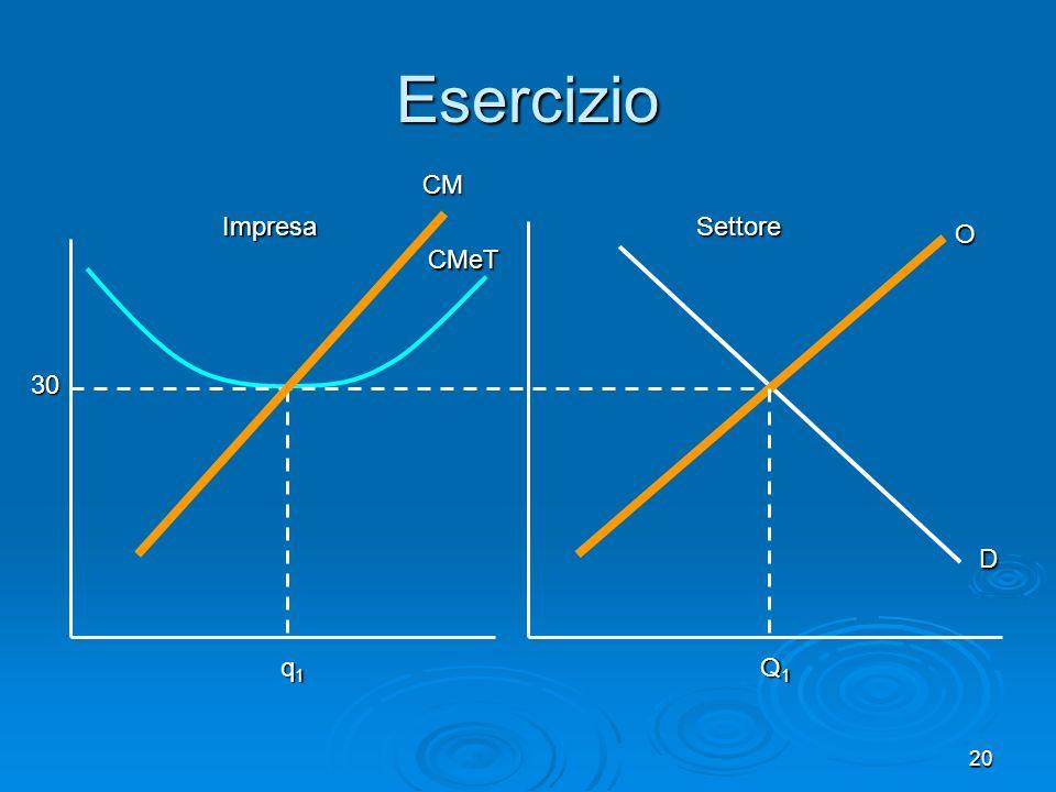 20 CMeT CM Impresa Esercizio D O Q1Q1Q1Q1 Settore 30 q1q1q1q1
