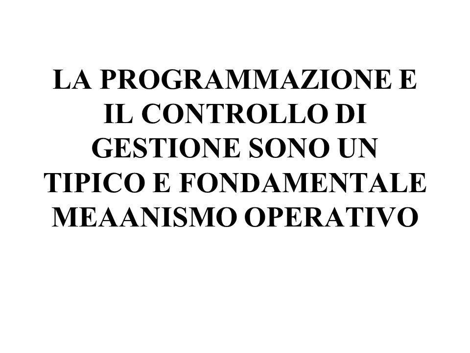 LA PROGRAMMAZIONE E IL CONTROLLO DI GESTIONE SONO UN TIPICO E FONDAMENTALE MEAANISMO OPERATIVO
