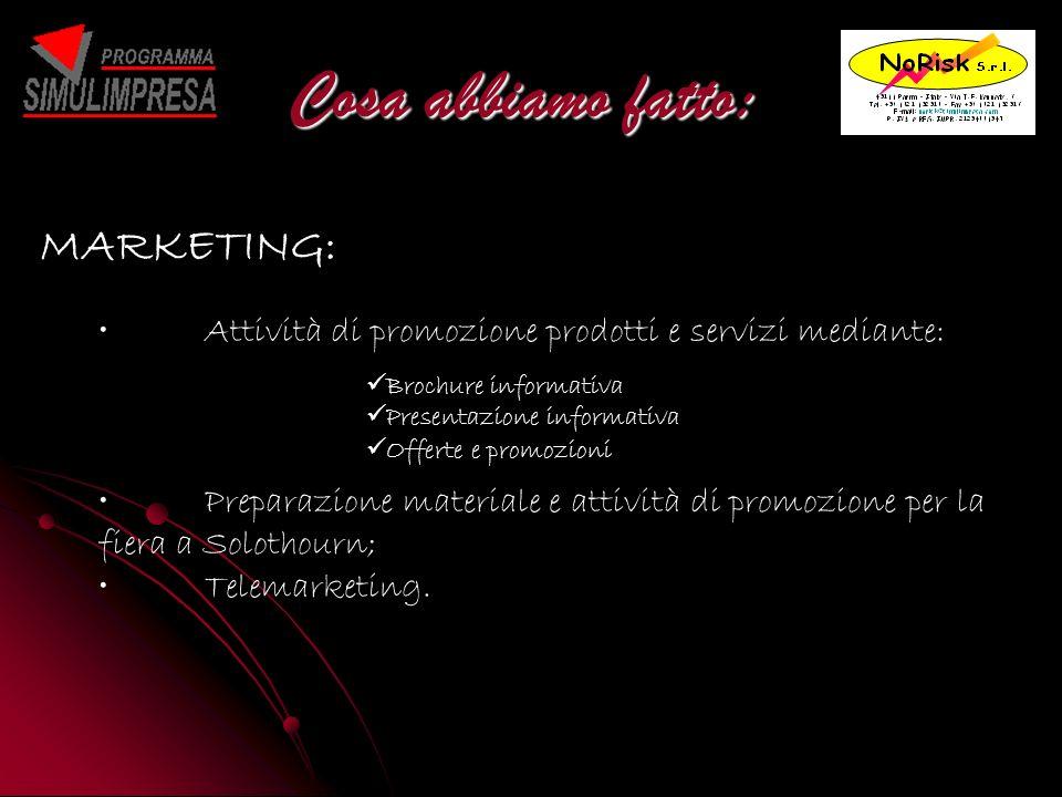 Cosa abbiamo fatto: MARKETING: Attività di promozione prodotti e servizi mediante: Preparazione materiale e attività di promozione per la fiera a Solothourn; Telemarketing.