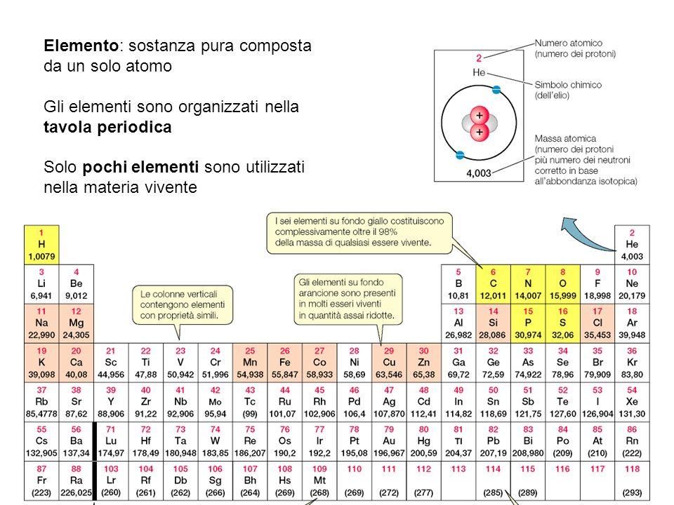 Elemento: sostanza pura composta da un solo atomo Gli elementi sono organizzati nella tavola periodica Solo pochi elementi sono utilizzati nella mater