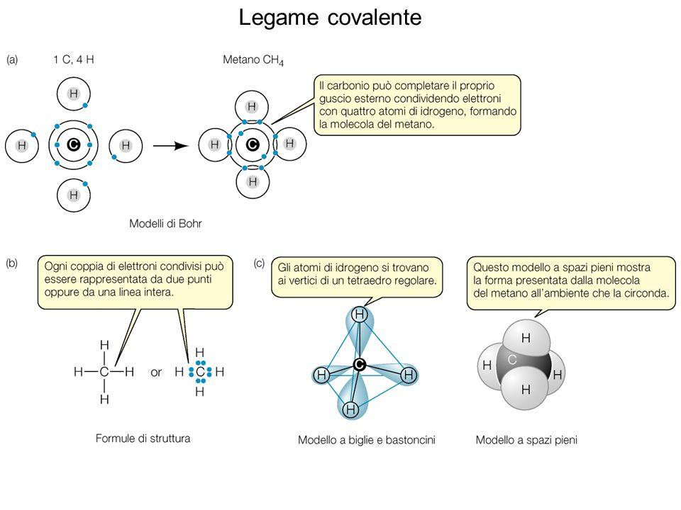Capacità di legame di elementi biologicamente importanti ELEMENTO Numero legami covalenti Idrogeno (H)1 Ossigeno (O)2 Zolfo (S)2 Azoto (N)3 Carbonio (C)4 Fosforo (P)5