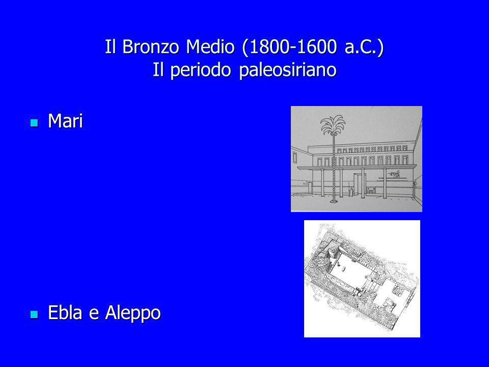 Il Bronzo Medio (1800-1600 a.C.) Il periodo paleosiriano Mari Mari Ebla e Aleppo Ebla e Aleppo