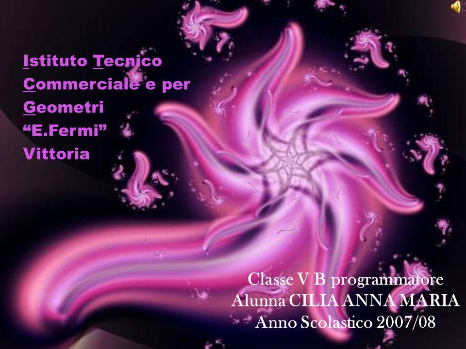 Istituto Tecnico Commerciale e per Geometri E.Fermi Vittoria Classe V B programmatore Alunna CILIA ANNA MARIA Anno Scolastico 2007/08