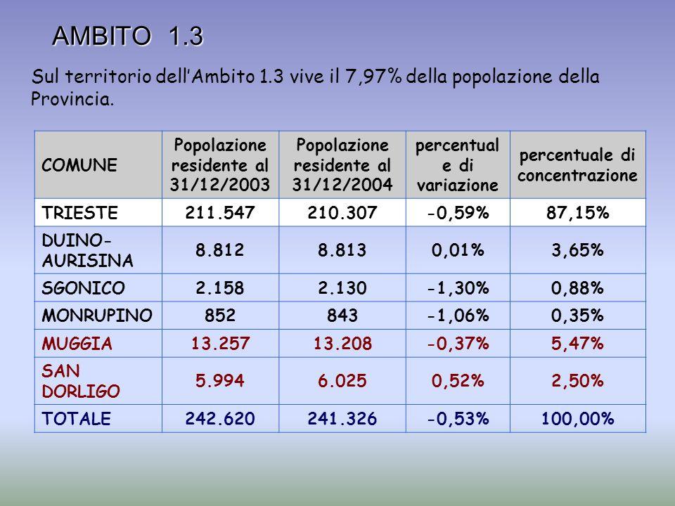 AMBITO 1.3 COMUNE Popolazione residente al 31/12/2003 Popolazione residente al 31/12/2004 percentual e di variazione percentuale di concentrazione TRI