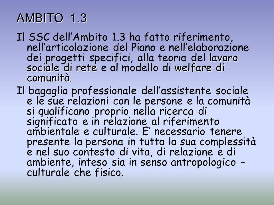 lavoro sociale di retewelfare di comunità. Il SSC dellAmbito 1.3 ha fatto riferimento, nellarticolazione del Piano e nellelaborazione dei progetti spe