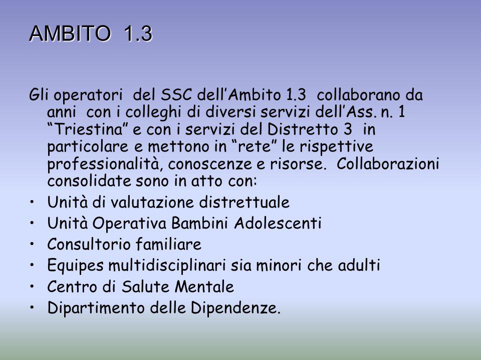 AMBITO 1.3 Gli operatori del SSC dellAmbito 1.3 collaborano da anni con i colleghi di diversi servizi dellAss. n. 1 Triestina e con i servizi del Dist