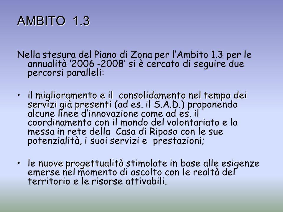 AMBITO 1.3 Nella stesura del Piano di Zona per lAmbito 1.3 per le annualità 2006 -2008 si è cercato di seguire due percorsi paralleli: miglioramento e
