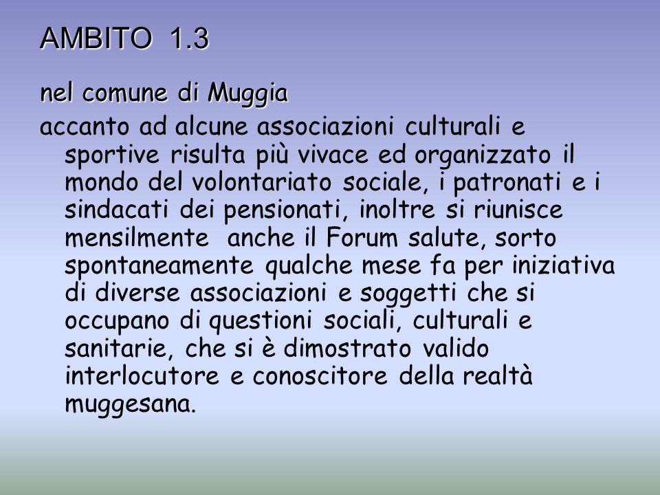 AMBITO 1.3 nel comune di Muggia accanto ad alcune associazioni culturali e sportive risulta più vivace ed organizzato il mondo del volontariato social