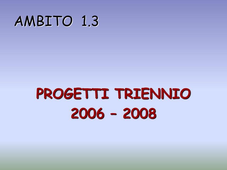 AMBITO 1.3 PROGETTI TRIENNIO 2006 – 2008