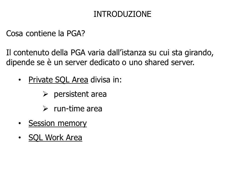INTRODUZIONE Cosa contiene la PGA? Il contenuto della PGA varia dallistanza su cui sta girando, dipende se è un server dedicato o uno shared server. P
