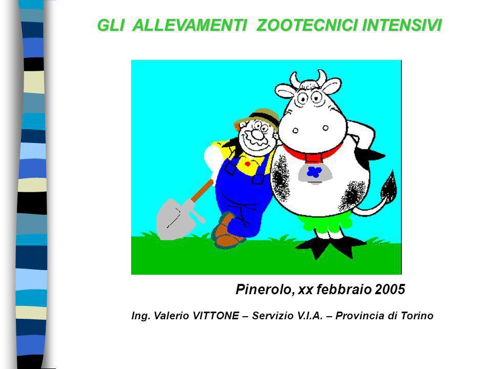 GLI ALLEVAMENTI ZOOTECNICI INTENSIVI Pinerolo, xx febbraio 2005 Ing. Valerio VITTONE – Servizio V.I.A. – Provincia di Torino