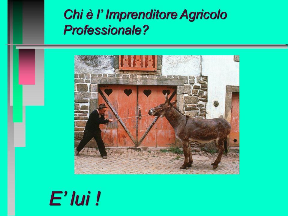 La nuova figura dellimprenditore agricolo professionale Indirizzare eventuali osservazioni a massimo.clerico@regione.piemonte.it